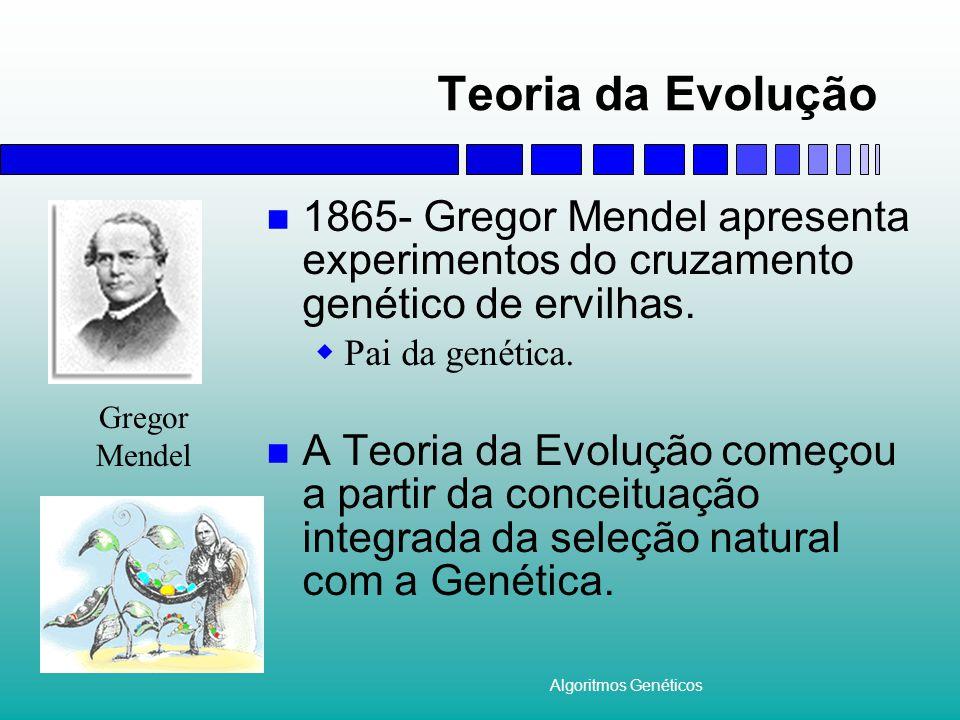 Algoritmos Genéticos Teoria da Evolução 1865- Gregor Mendel apresenta experimentos do cruzamento genético de ervilhas.