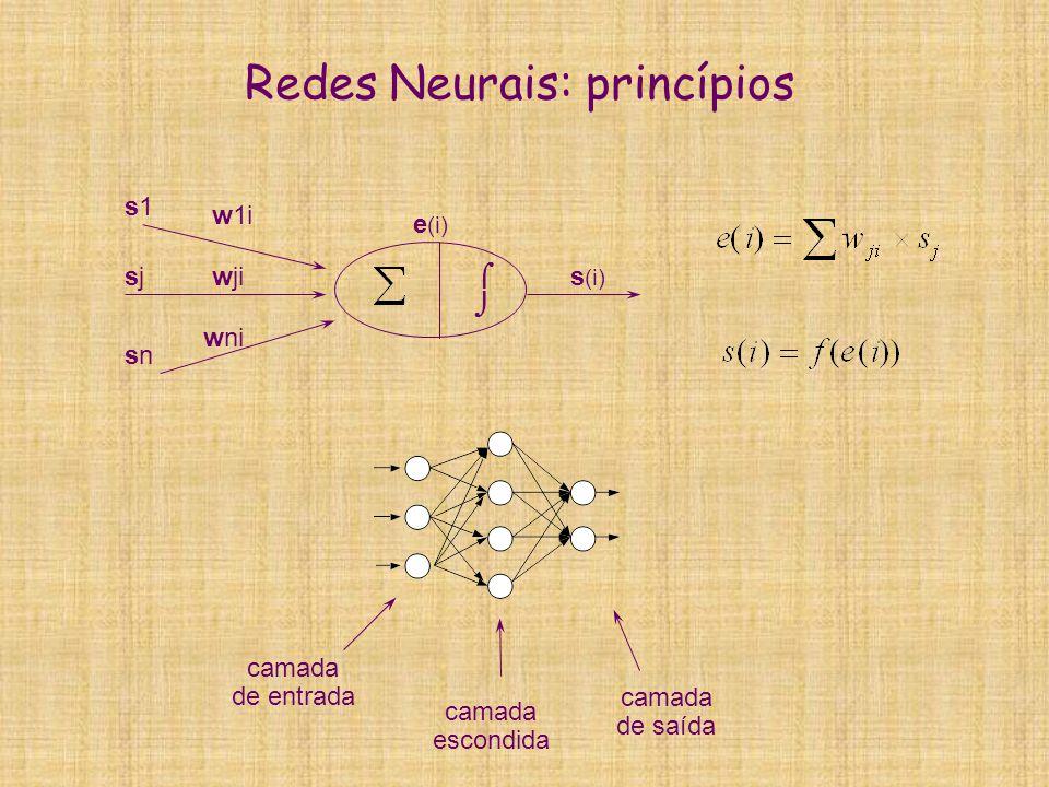 Redes Neurais: princípios  wji w1i wni s (i) e (i) s1s1 sjsj snsn camada de entrada camada de saída camada escondida