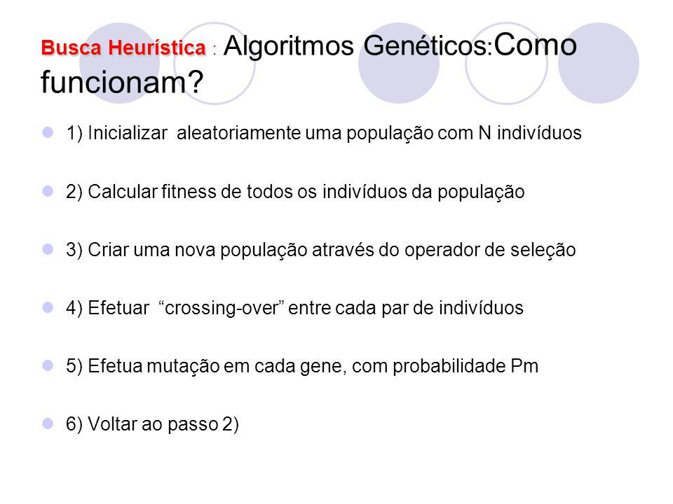 Busca Heurística Busca Heurística : Algoritmos Genéticos : Como funcionam? 1) Inicializar aleatoriamente uma população com N indivíduos 2) Calcular fi
