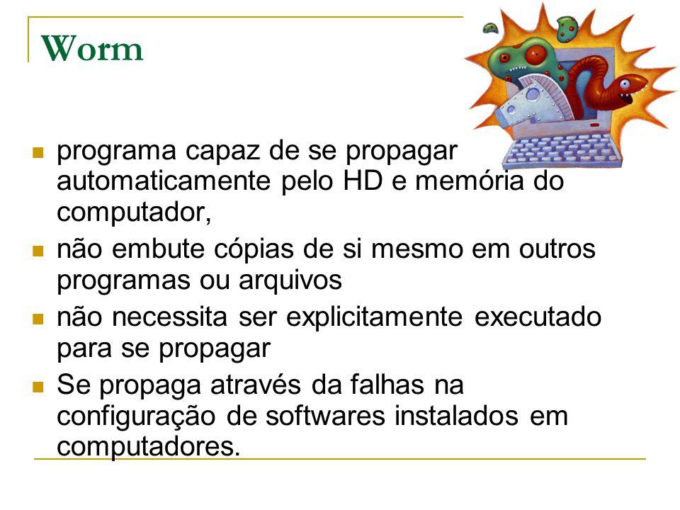 Worm programa capaz de se propagar automaticamente pelo HD e memória do computador, não embute cópias de si mesmo em outros programas ou arquivos não necessita ser explicitamente executado para se propagar Se propaga através da falhas na configuração de softwares instalados em computadores.