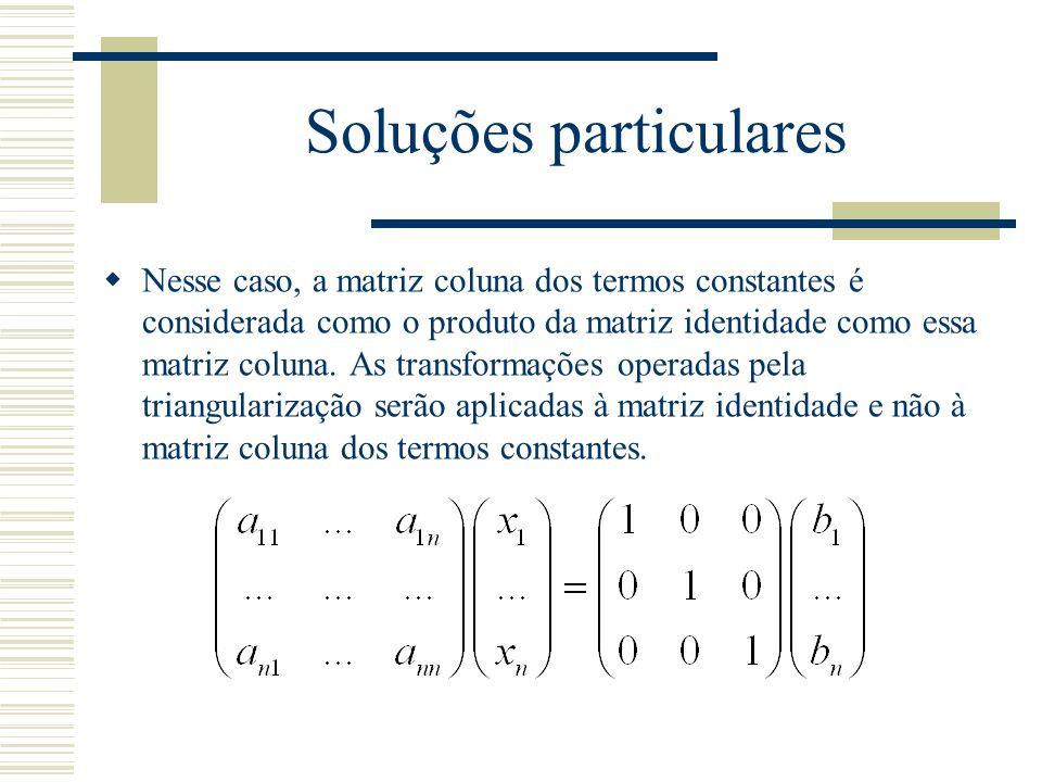 Soluções particulares  Nesse caso, a matriz coluna dos termos constantes é considerada como o produto da matriz identidade como essa matriz coluna. A