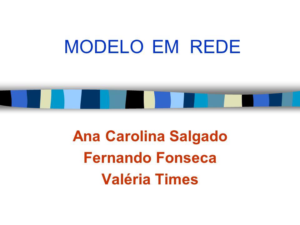 MODELO EM REDE Ana Carolina Salgado Fernando Fonseca Valéria Times
