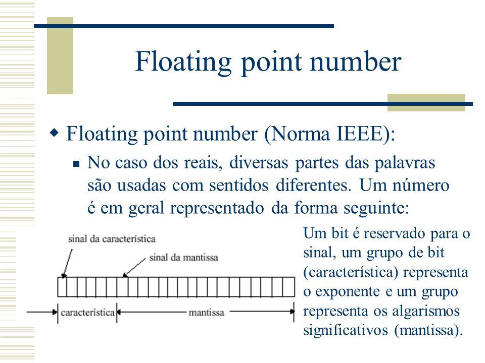 Floating point number  Floating point number (Norma IEEE): No caso dos reais, diversas partes das palavras são usadas com sentidos diferentes. Um núm