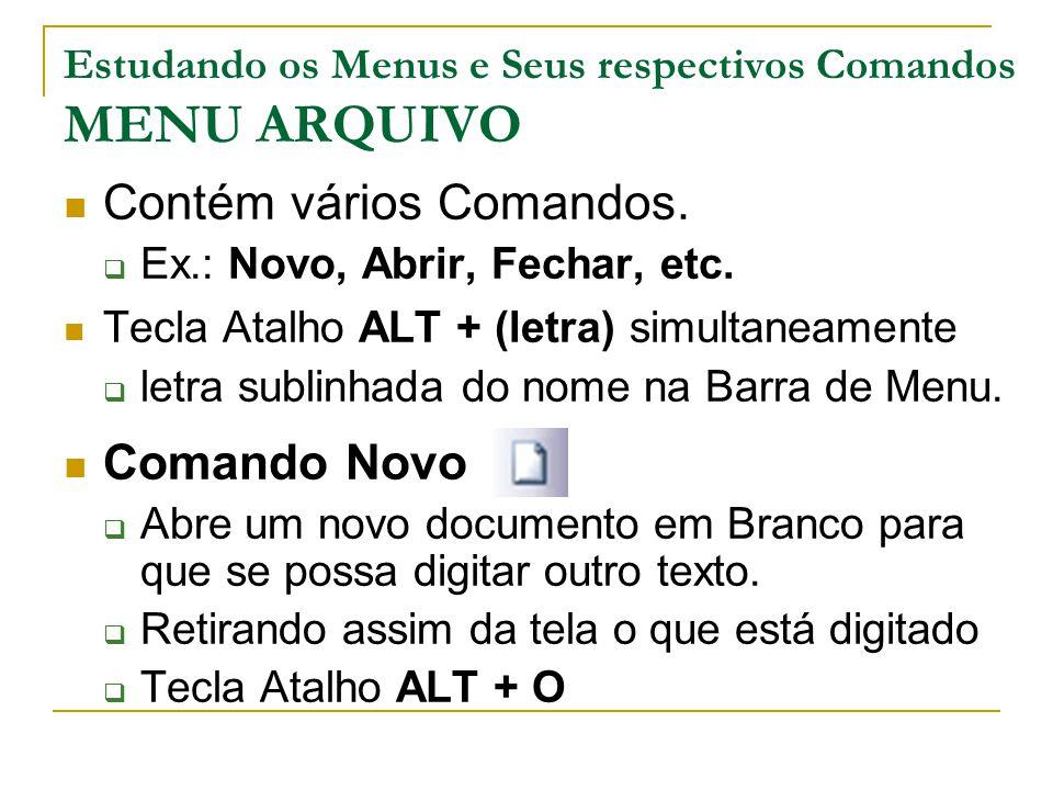 Estudando os Menus e Seus respectivos Comandos MENU ARQUIVO Contém vários Comandos.  Ex.: Novo, Abrir, Fechar, etc. Tecla Atalho ALT + (letra) simult
