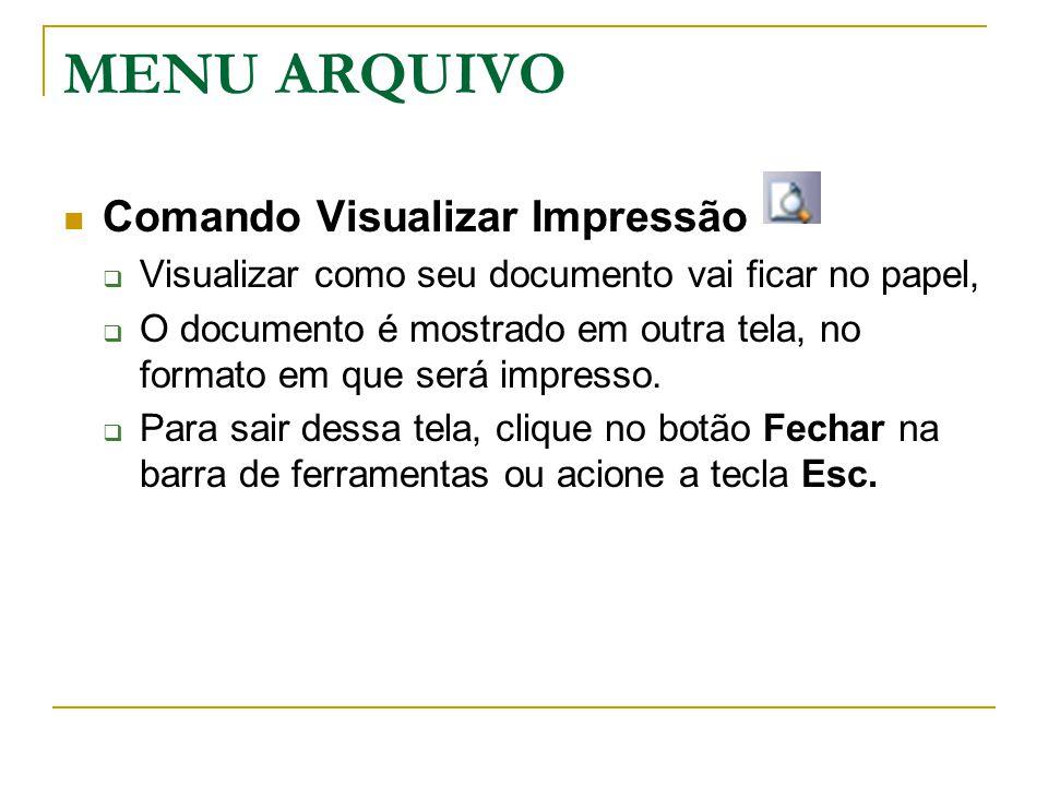 MENU ARQUIVO Comando Visualizar Impressão  Visualizar como seu documento vai ficar no papel,  O documento é mostrado em outra tela, no formato em qu