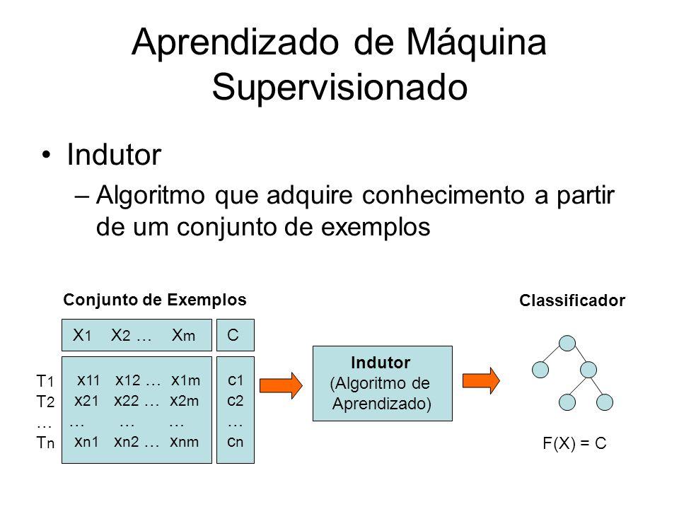 Aprendizado de Máquina Supervisionado Indutor –Algoritmo que adquire conhecimento a partir de um conjunto de exemplos Indutor (Algoritmo de Aprendizado) X 1 X 2 … X m x 11 x 12 … x 1m x 21 x 22 … x 2m … … … x n1 x n2 … x nm T1T2…TnT1T2…Tn Conjunto de Exemplos Classificador C c 1 c 2 … c n F(X) = C