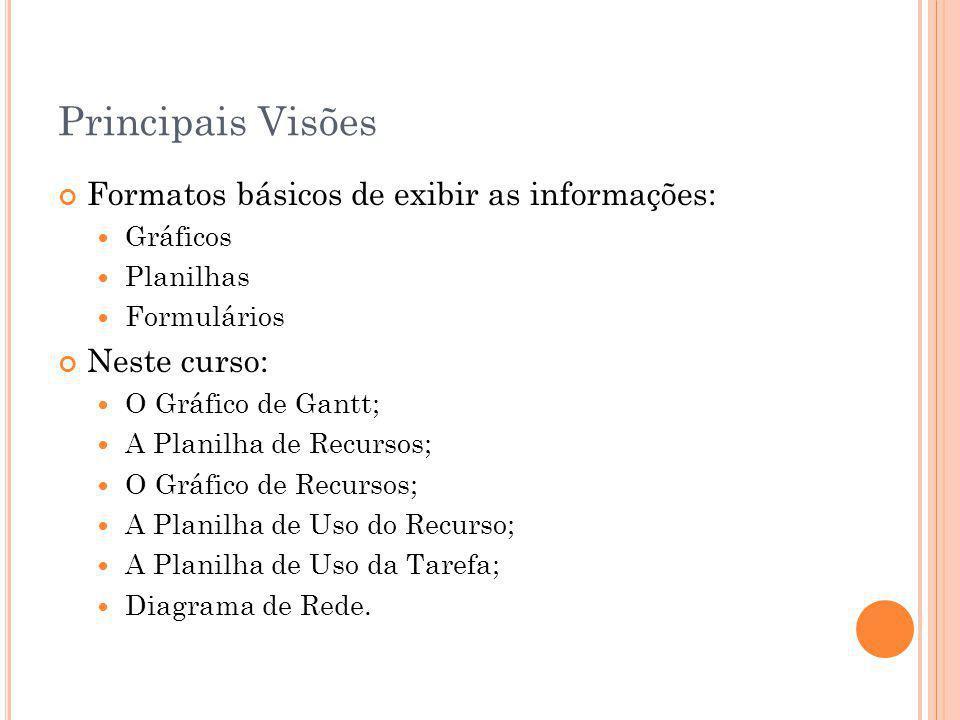 Principais Visões Formatos básicos de exibir as informações: Gráficos Planilhas Formulários Neste curso: O Gráfico de Gantt; A Planilha de Recursos; O