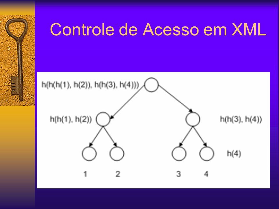 Controle de Acesso em XML