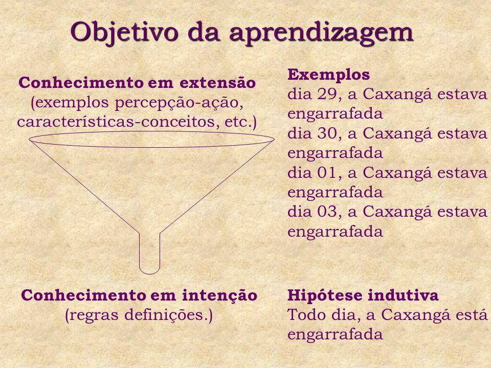 Objetivo da aprendizagem Conhecimento em extensão (exemplos percepção-ação, características-conceitos, etc.) Conhecimento em intenção (regras definições.) Exemplos dia 29, a Caxangá estava engarrafada dia 30, a Caxangá estava engarrafada dia 01, a Caxangá estava engarrafada dia 03, a Caxangá estava engarrafada Hipótese indutiva Todo dia, a Caxangá está engarrafada