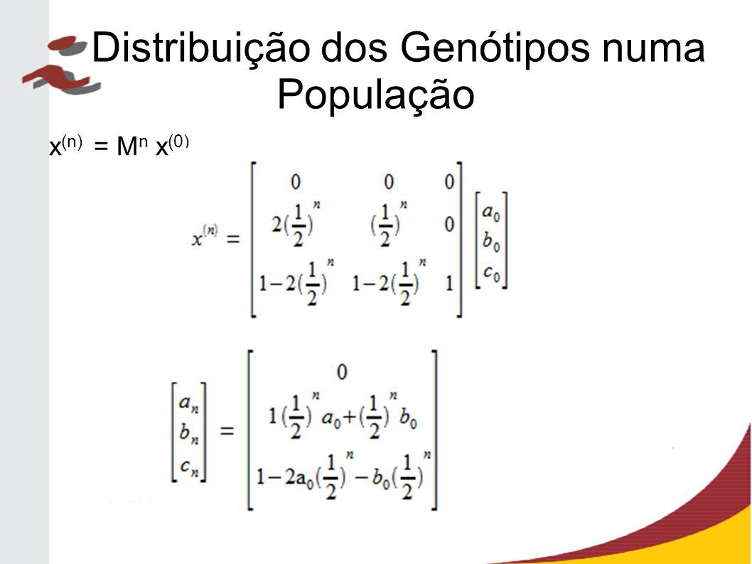 x (n) = M n x (0) Distribuição dos Genótipos numa População