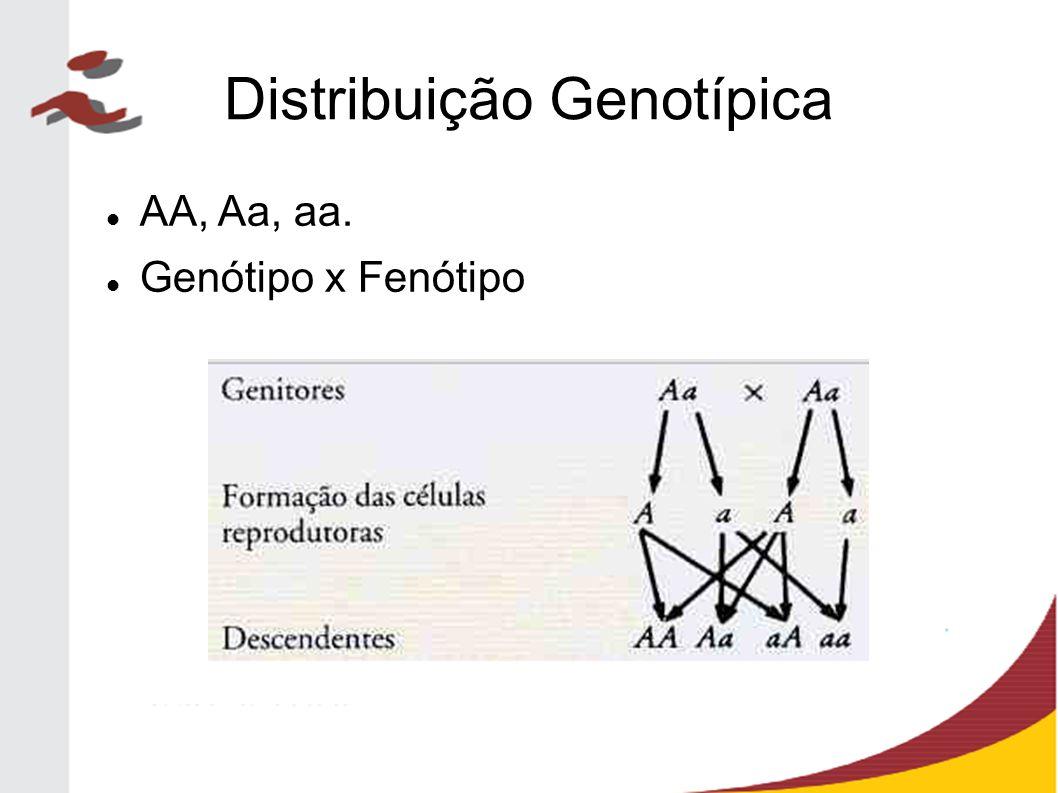 Distribuição Genotípica AA, Aa, aa. Genótipo x Fenótipo