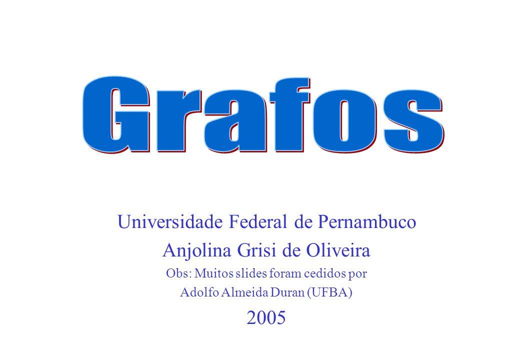 Universidade Federal de Pernambuco Anjolina Grisi de Oliveira Obs: Muitos slides foram cedidos por Adolfo Almeida Duran (UFBA) 2005