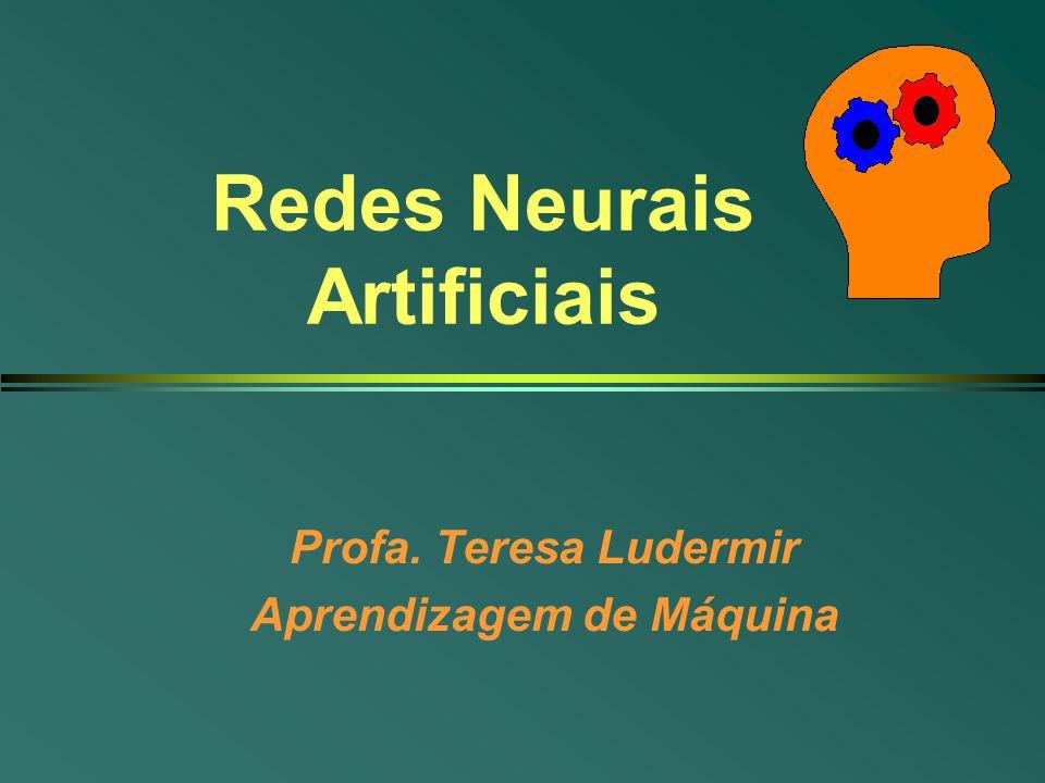 Redes Neurais Artificiais Profa. Teresa Ludermir Aprendizagem de Máquina