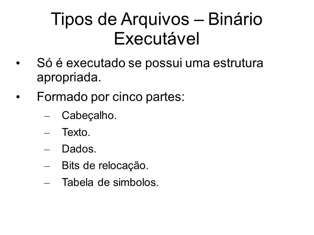 Tipos de Arquivos – Binário Executável Só é executado se possui uma estrutura apropriada.