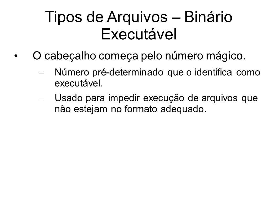 Tipos de Arquivos – Binário Executável O cabeçalho começa pelo número mágico. – Número pré-determinado que o identifica como executável. – Usado para