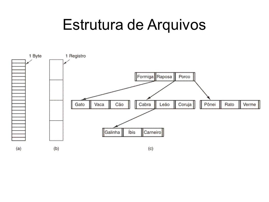 Podem seguir uma estrutura pré-determinada.Ou podem ser apenas uma sequência de bytes (a).