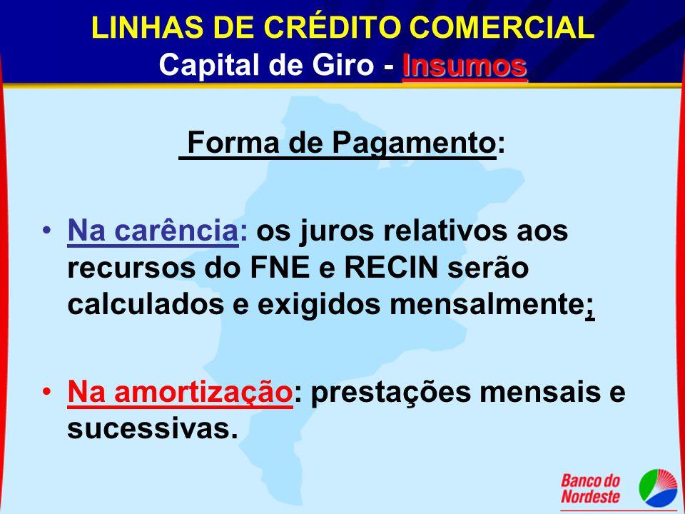 Insumos LINHAS DE CRÉDITO COMERCIAL Capital de Giro - Insumos Forma de Pagamento: Na carência: os juros relativos aos recursos do FNE e RECIN serão ca