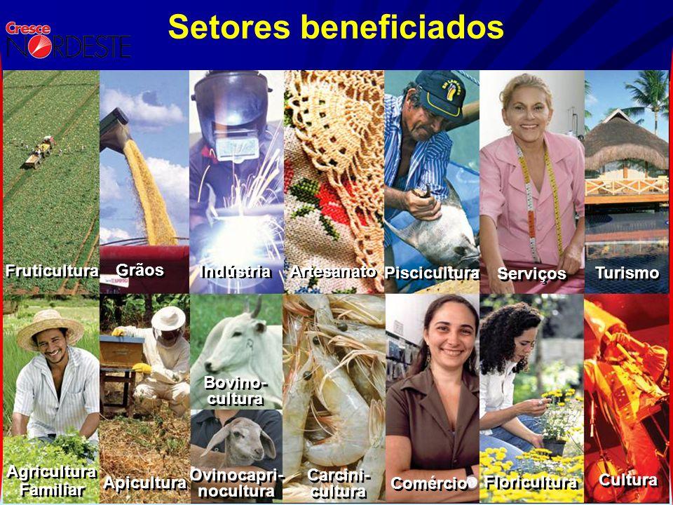 Setores beneficiados Agricultura Familiar Agricultura Familiar Fruticultura Apicultura Carcini- cultura Carcini- cultura Comércio Turismo Serviços Pis