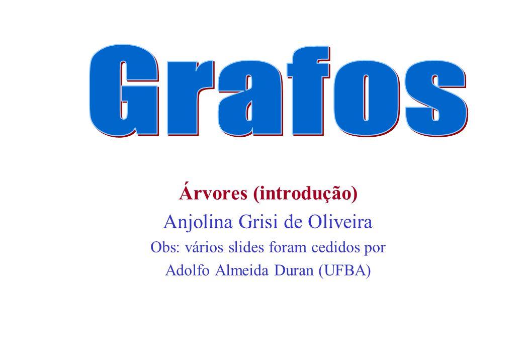 Árvores (introdução) Anjolina Grisi de Oliveira Obs: vários slides foram cedidos por Adolfo Almeida Duran (UFBA)