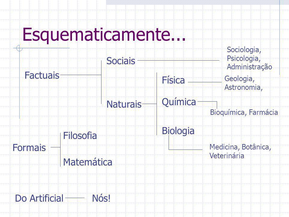 Esquematicamente... Factuais Filosofia Naturais Sociais Formais Matemática Do Artificial Sociologia, Psicologia, Administração Biologia Química Física