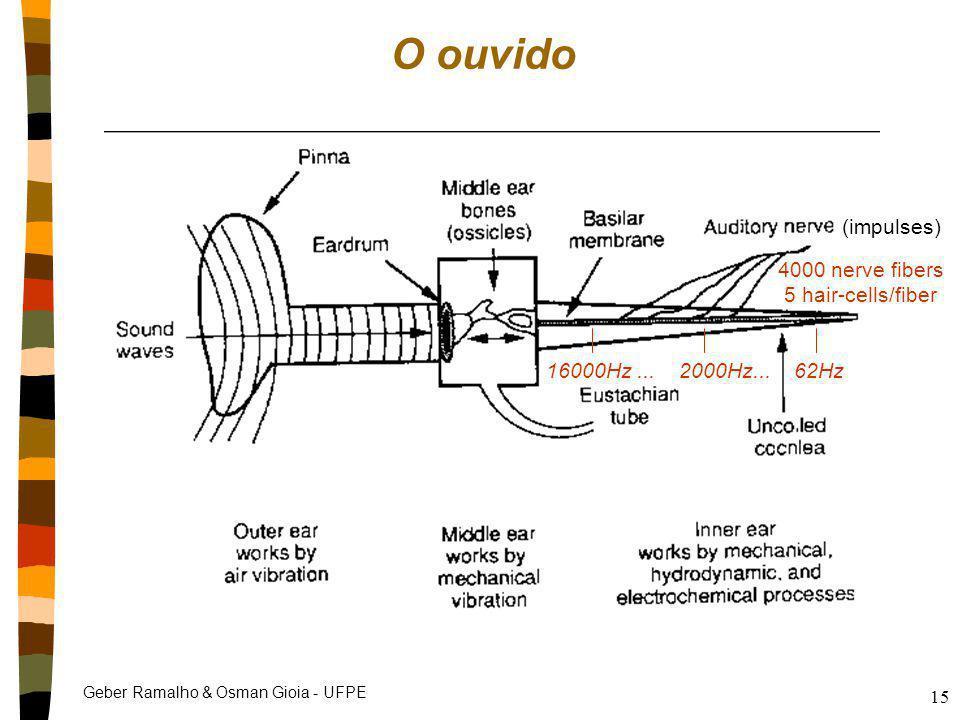 Geber Ramalho & Osman Gioia - UFPE 15 O ouvido 4000 nerve fibers 5 hair-cells/fiber 16000Hz... 2000Hz... 62Hz (impulses)