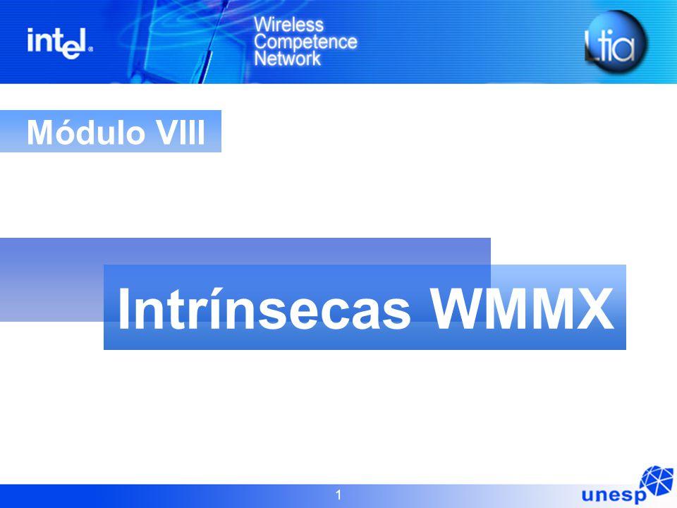 1 Módulo VIII Intrínsecas WMMX