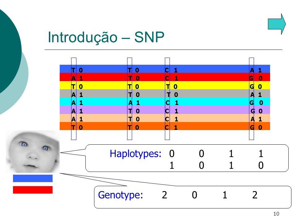 10 Introdução – SNP A 1 T 0 C 1 G 0 T 0 T 0 T 0 G 0 A 1 T 0 T 0 A 1 A 1 A 1 C 1 G 0 A 1 T 0 C 1 G 0 A 1 T 0 C 1 A 1 T 0 T 0 C 1 G 0 T 0 T 0 C 1 A 1 Genotype: 2 0 1 2 Haplotypes:0011 1010