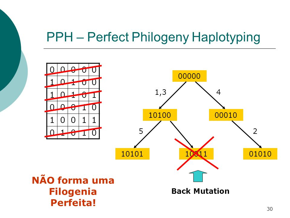 30 PPH – Perfect Philogeny Haplotyping 00000 10100 10101 00010 10011 01010 00000 NÃO forma uma Filogenia Perfeita! 10011 Back Mutation 10100 1,3 10101