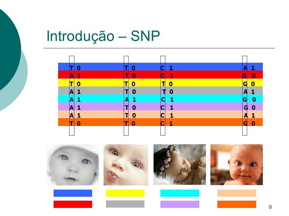 8 Introdução – SNP A 1 T 0 C 1 G 0 T 0 T 0 T 0 G 0 A 1 T 0 T 0 A 1 A 1 A 1 C 1 G 0 A 1 T 0 C 1 G 0 A 1 T 0 C 1 A 1 T 0 T 0 C 1 G 0 T 0 T 0 C 1 A 1
