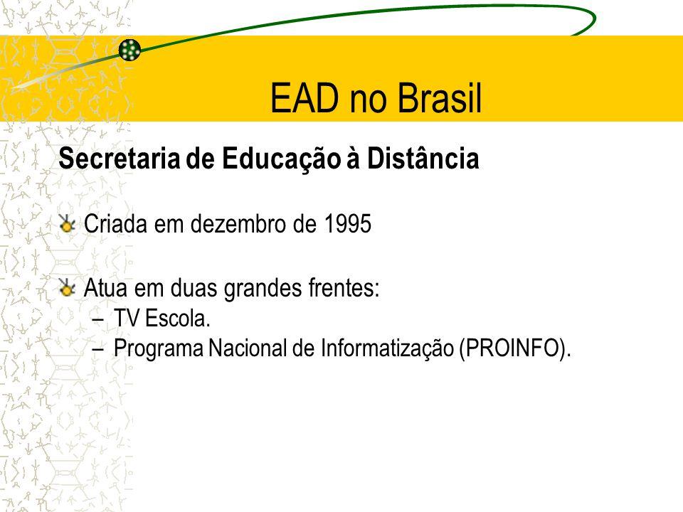 EAD no Brasil Secretaria de Educação à Distância Criada em dezembro de 1995 Atua em duas grandes frentes: –TV Escola. –Programa Nacional de Informatiz
