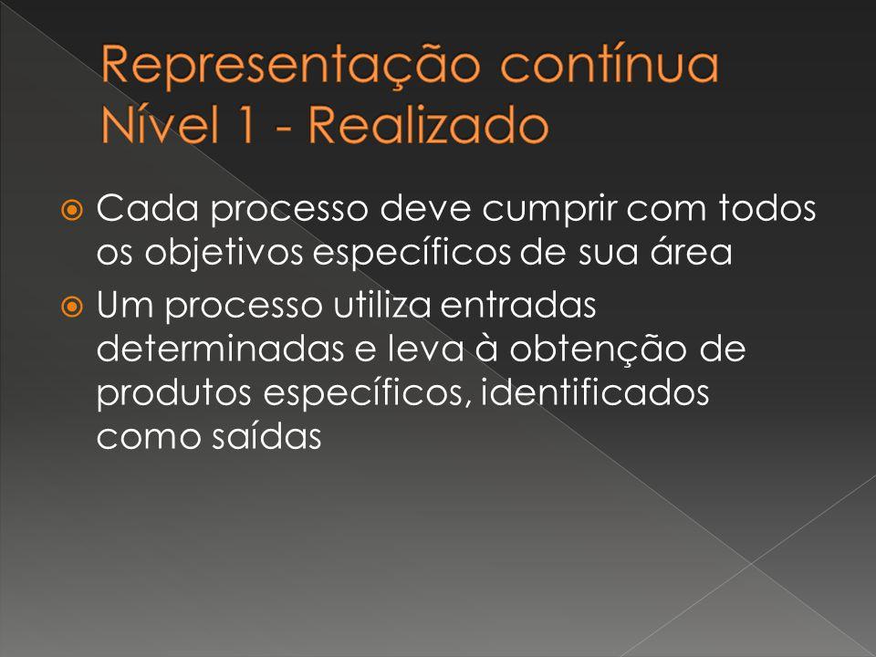  Cada processo deve cumprir com todos os objetivos específicos de sua área  Um processo utiliza entradas determinadas e leva à obtenção de produtos
