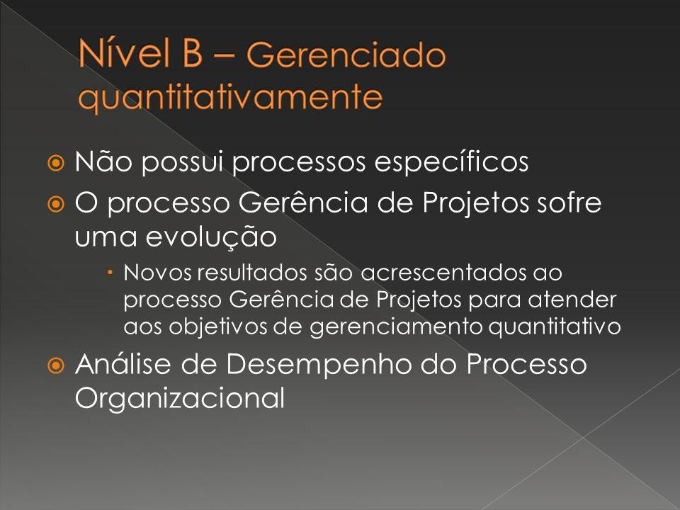  Não possui processos específicos  O processo Gerência de Projetos sofre uma evolução  Novos resultados são acrescentados ao processo Gerência de P