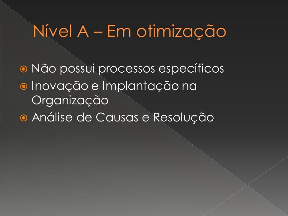  Não possui processos específicos  Inovação e Implantação na Organização  Análise de Causas e Resolução