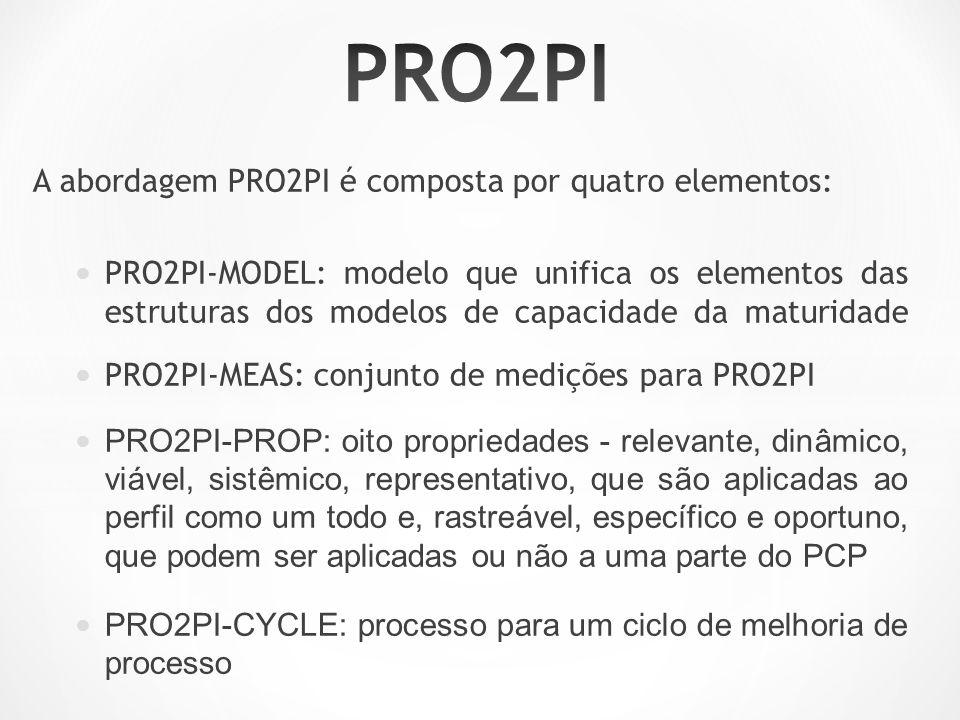A abordagem PRO2PI é composta por quatro elementos: PRO2PI-MODEL: modelo que unifica os elementos das estruturas dos modelos de capacidade da maturidade PRO2PI-MEAS: conjunto de medições para PRO2PI PRO2PI-PROP: oito propriedades - relevante, dinâmico, viável, sistêmico, representativo, que são aplicadas ao perfil como um todo e, rastreável, específico e oportuno, que podem ser aplicadas ou não a uma parte do PCP PRO2PI-CYCLE: processo para um ciclo de melhoria de processo