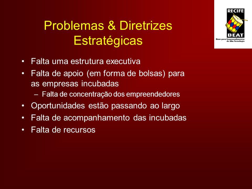 Problemas & Diretrizes Estratégicas Falta uma estrutura executiva Falta de apoio (em forma de bolsas) para as empresas incubadas –Falta de concentração dos empreendedores Oportunidades estão passando ao largo Falta de acompanhamento das incubadas Falta de recursos
