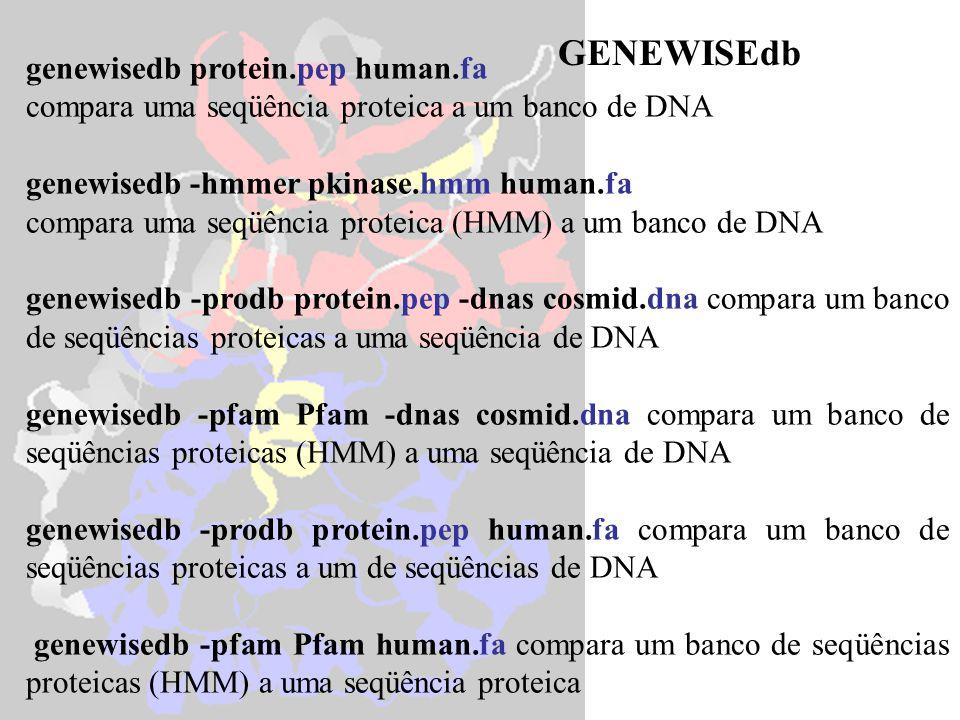 genewisedb protein.pep human.fa compara uma seqüência proteica a um banco de DNA genewisedb -hmmer pkinase.hmm human.fa compara uma seqüência proteica