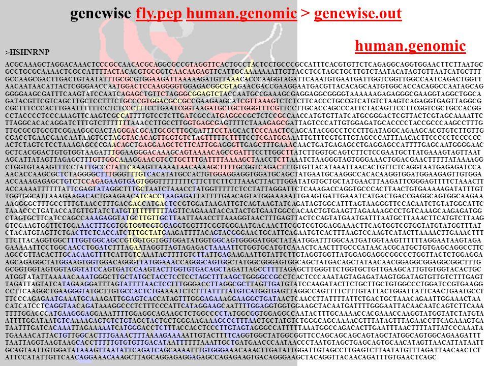>HSHNRNP ACGCAAAGCTAGGACAAACTCCCGCCAACACGCAGGCGCCGTAGGTTCACTGCCTACTCCTGCCCGCCATTTCACGTGTTCTCAGAGGCAGGTGGAACTTCTTAATGC GCCTGCGCAAAACTCGCCATTTTACTACACGT