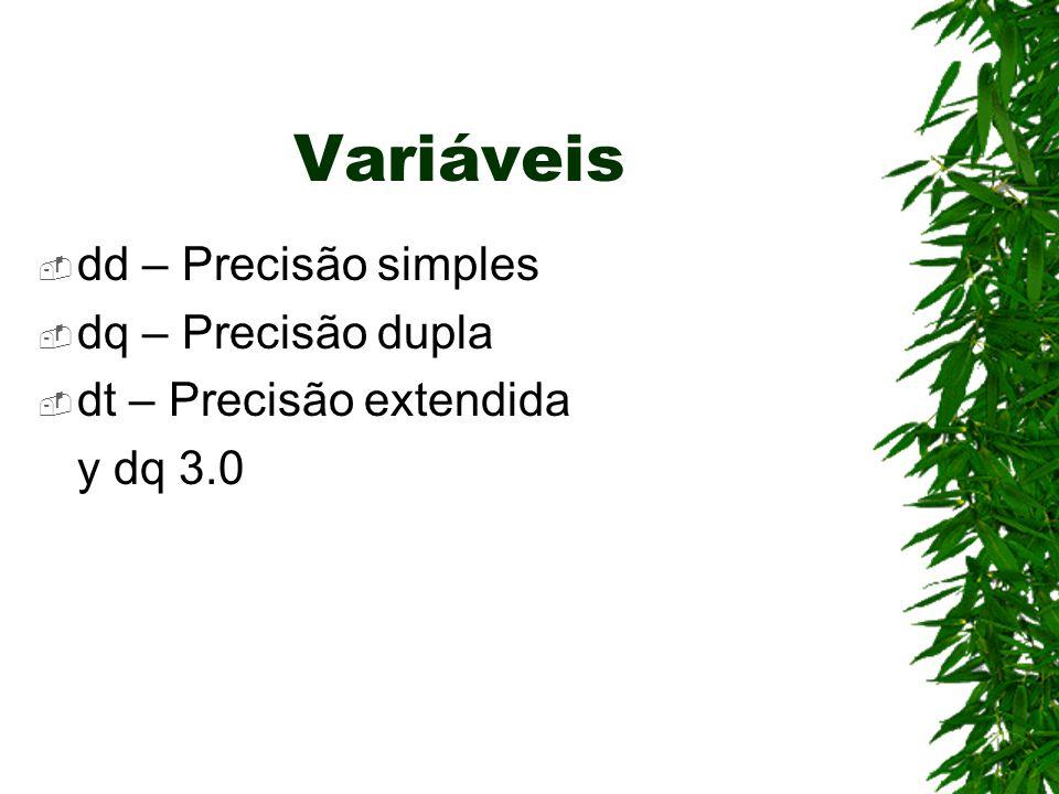 Variáveis  dd – Precisão simples  dq – Precisão dupla  dt – Precisão extendida y dq 3.0