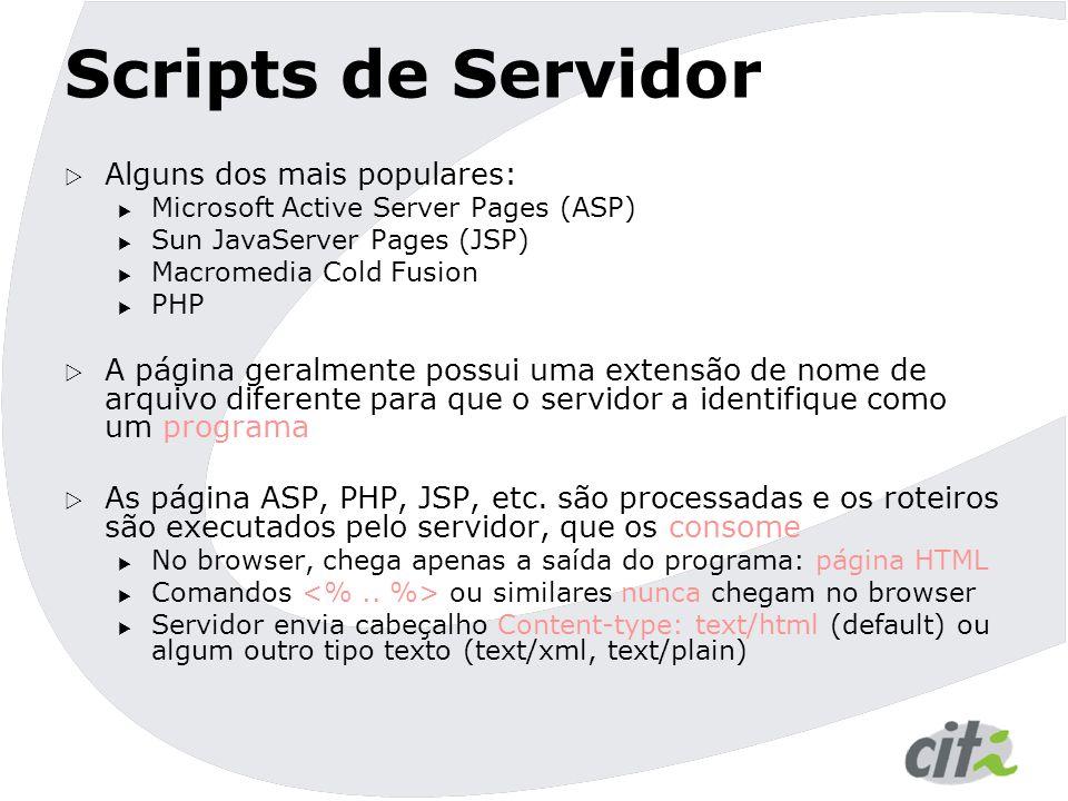 Scripts de Servidor  Alguns dos mais populares:  Microsoft Active Server Pages (ASP)  Sun JavaServer Pages (JSP)  Macromedia Cold Fusion  PHP  A página geralmente possui uma extensão de nome de arquivo diferente para que o servidor a identifique como um programa  As página ASP, PHP, JSP, etc.
