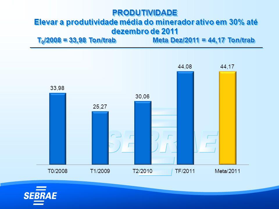 PRODUTIVIDADE T 0 /2008 = 33,98 Ton/trab Meta Dez/2011 = 44,17 Ton/trab PRODUTIVIDADE Elevar a produtividade média do minerador ativo em 30% até dezem