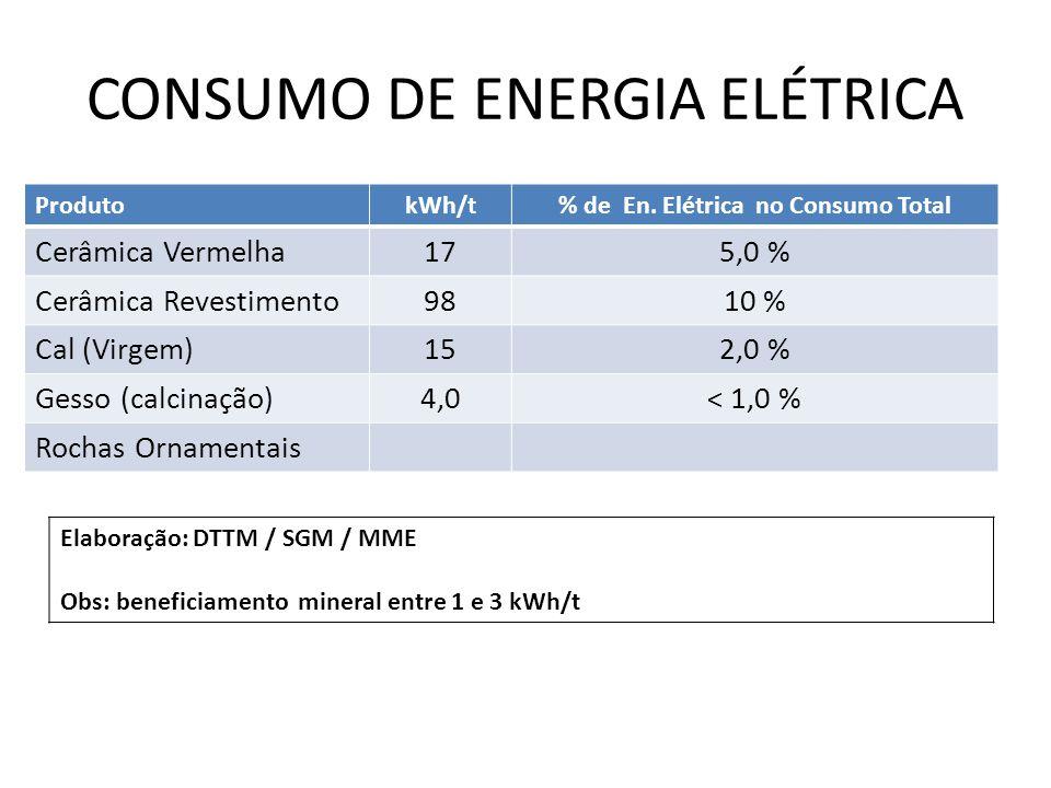 CONSUMO DE ENERGIA ELÉTRICA ProdutokWh/t% de En. Elétrica no Consumo Total Cerâmica Vermelha175,0 % Cerâmica Revestimento9810 % Cal (Virgem)152,0 % Ge
