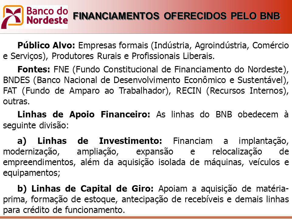 Público Alvo: Empresas formais (Indústria, Agroindústria, Comércio e Serviços), Produtores Rurais e Profissionais Liberais. Fontes: FNE (Fundo Constit