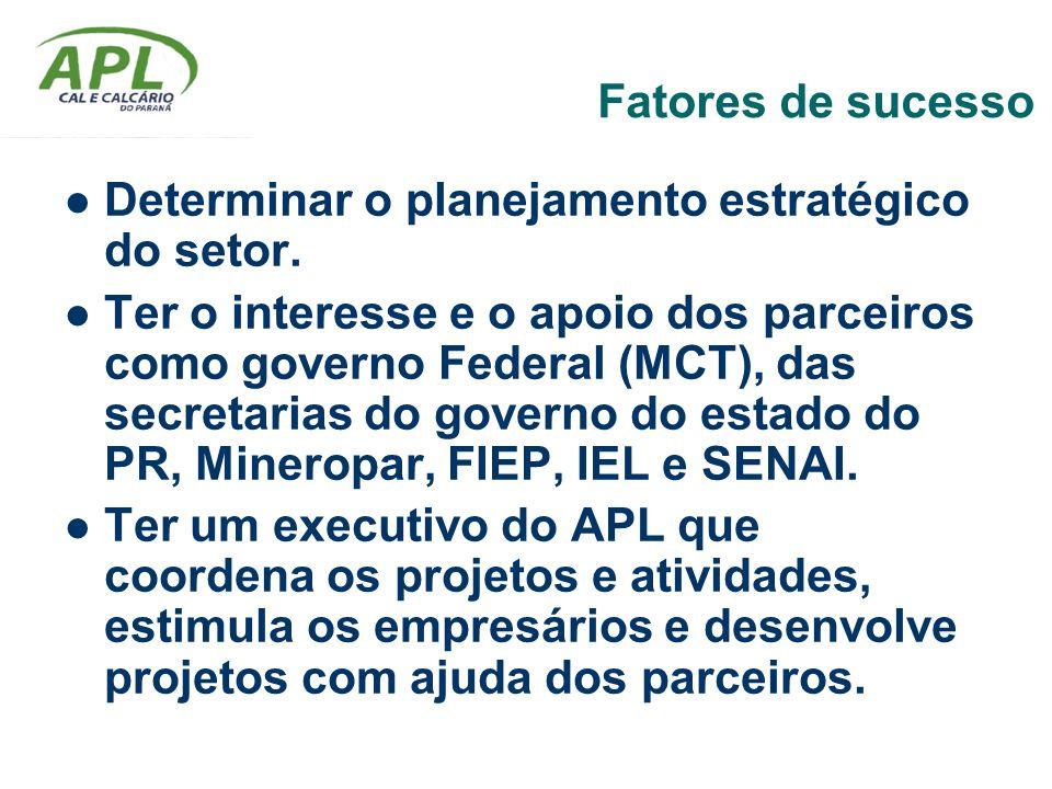 Fatores de sucesso Determinar o planejamento estratégico do setor. Ter o interesse e o apoio dos parceiros como governo Federal (MCT), das secretarias