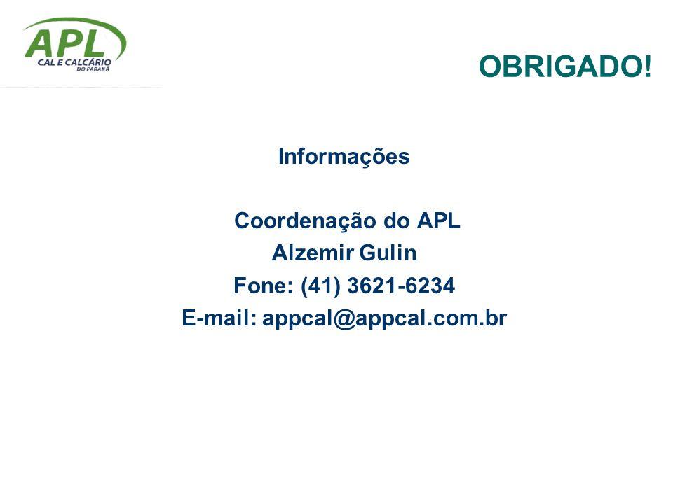 OBRIGADO! Informações Coordenação do APL Alzemir Gulin Fone: (41) 3621-6234 E-mail: appcal@appcal.com.br