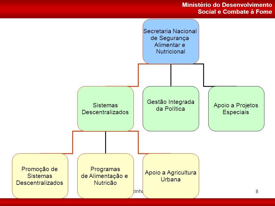 Ministério do Desenvolvimento Social e Combate à Fome Setembro/2006 Projeto Cozinhas Comunitárias 8 Secretaria Nacional de Segurança Alimentar e Nutricional Sistemas Descentralizados Gestão Integrada da Política Apoio a Projetos Especiais Promoção de Sistemas Descentralizados Apoio a Agricultura Urbana Programas de Alimentação e Nutricão