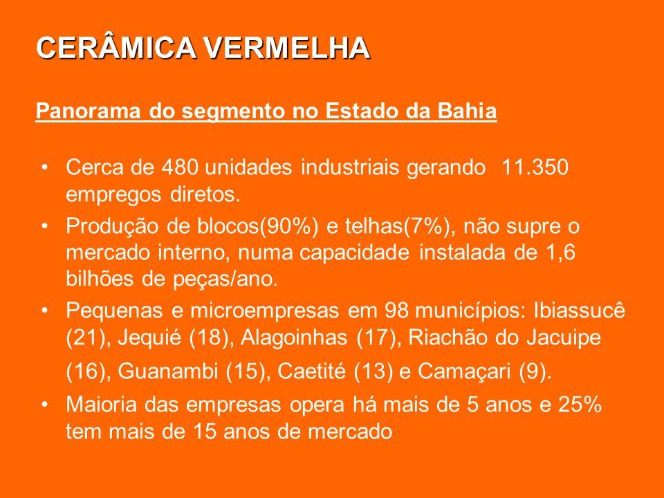 CERÂMICA VERMELHA Cerca de 480 unidades industriais gerando 11.350 empregos diretos. Produção de blocos(90%) e telhas(7%), não supre o mercado interno
