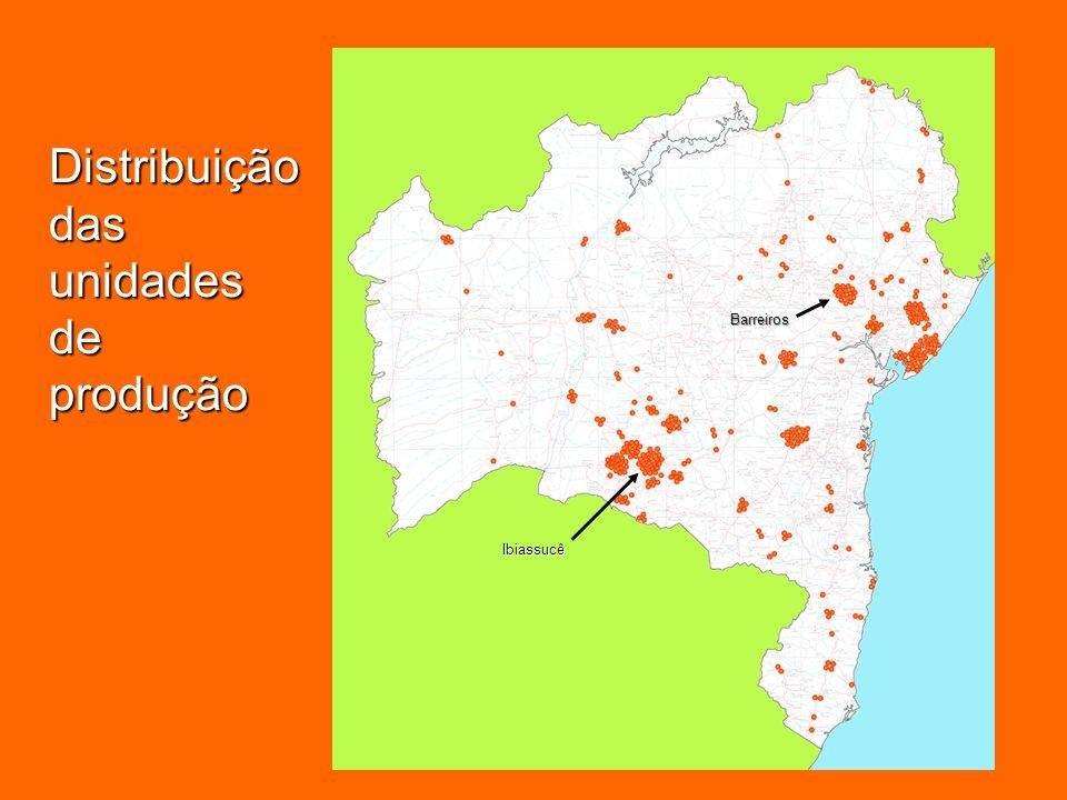 PÓLO CERAMISTA DE IBIASSUCÊ 21 empresas em operação; Existência de matéria-prima: qualidade e quantidade; Decreto municipal (1997) disponibilizando 10 ha para instalação de novas empresas; Proximidade com outros dois municípios produtores: Caetité (13 empresas) e Guanambi (15 empresas).