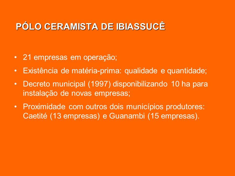 PÓLO CERAMISTA DE IBIASSUCÊ 21 empresas em operação; Existência de matéria-prima: qualidade e quantidade; Decreto municipal (1997) disponibilizando 10