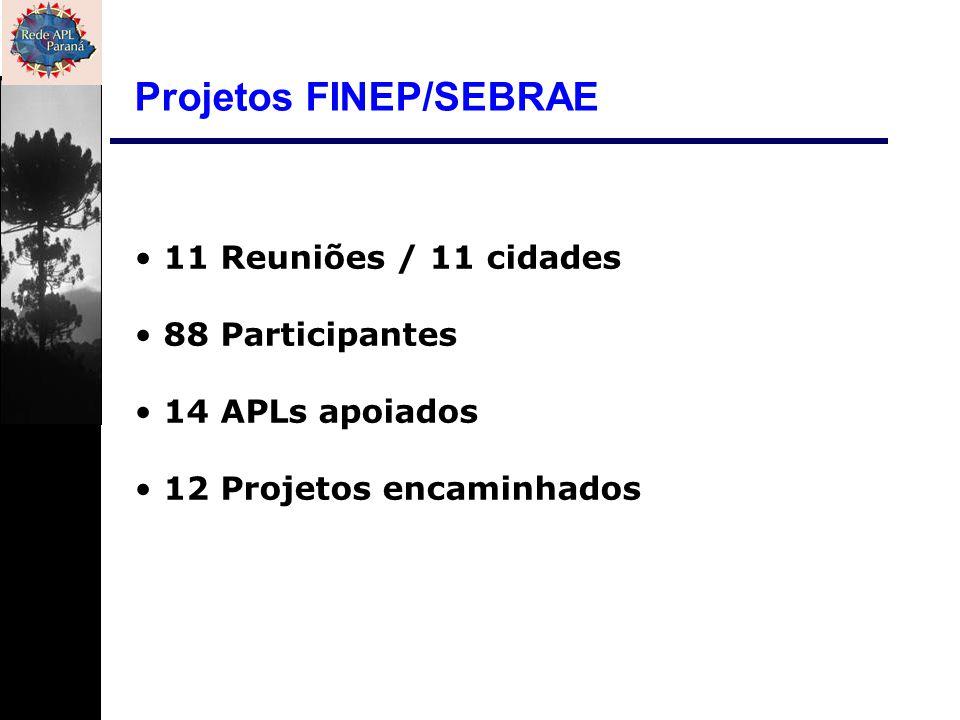 11 Reuniões / 11 cidades 88 Participantes 14 APLs apoiados 12 Projetos encaminhados Projetos FINEP/SEBRAE