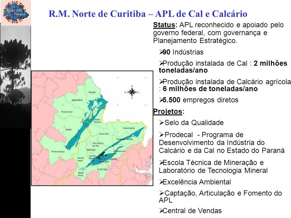 R.M. Norte de Curitiba – APL de Cal e Calcário Status: APL reconhecido e apoiado pelo governo federal, com governança e Planejamento Estratégico.  90